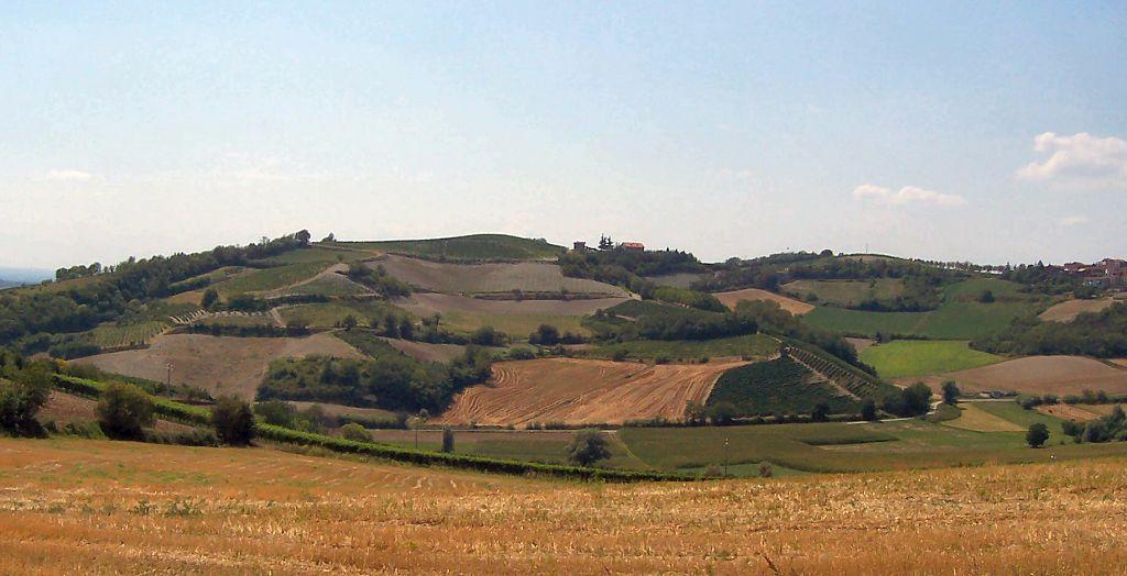 1. Monferrato panorama