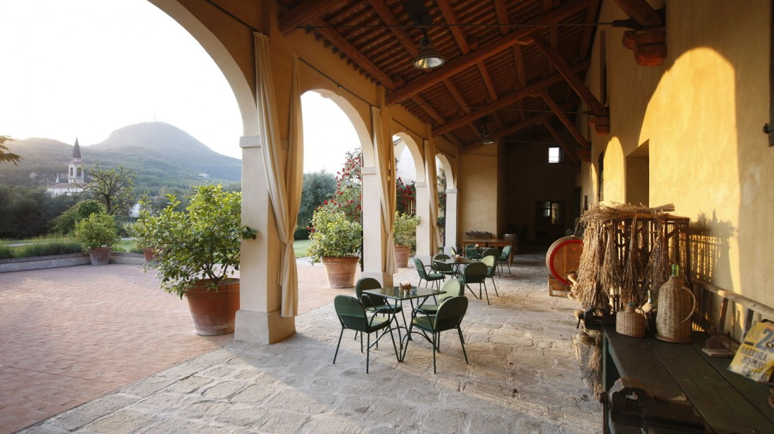 Azienda Agricola Ca`Orologio, Baone, Padova, Italia----For commercial use, please contact the photographer in advance!!!
