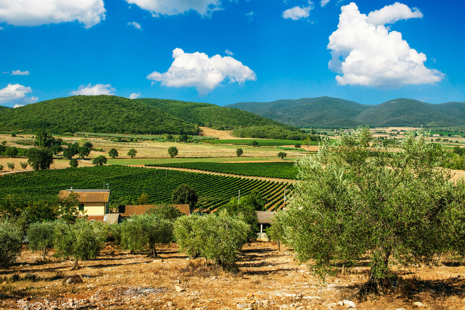 Poggiolivi country house in maremma in toscana for Toscana house
